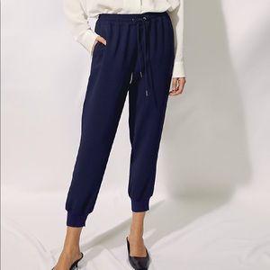 Wilfred Grey Aritzia pants